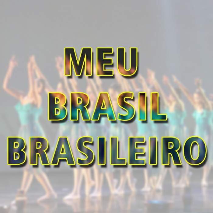 janiara de lima medeiros meu brasil brasileiro